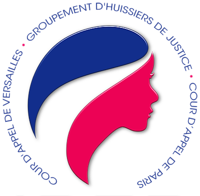 Logo GIE IDFP contentieux